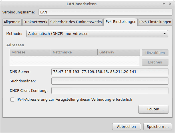 Networ-Manager mit extra DNS Server