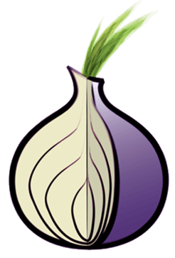 Quelle: https://commons.wikimedia.org/wiki/File:Tor_logo1.png